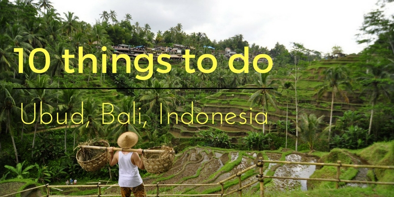 10 things to do in ubud banner