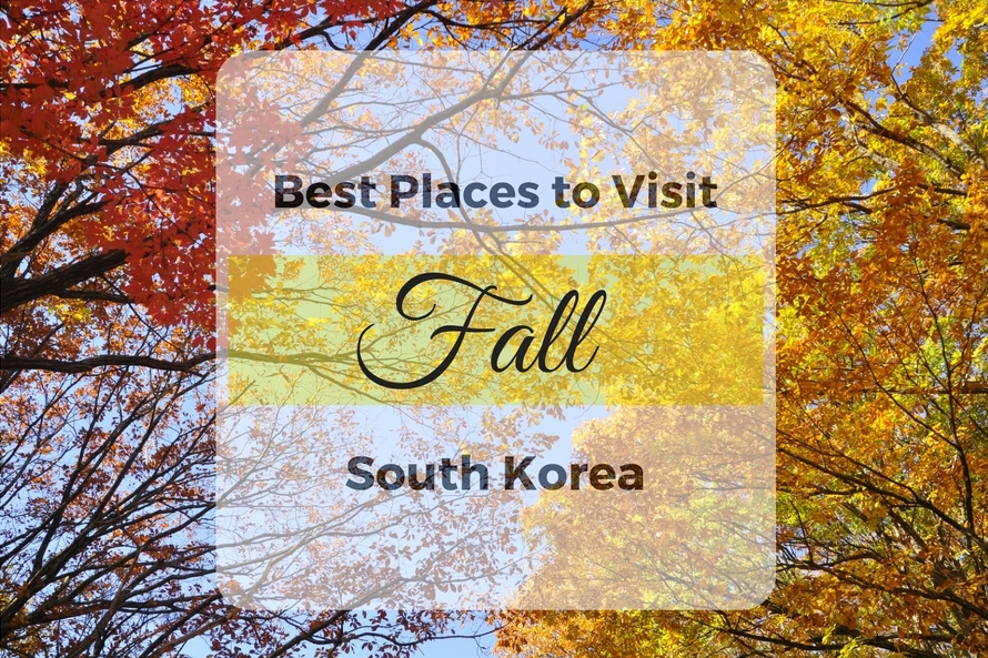 aef497437aaf5 The Best Spots for Fall Colors in South Korea